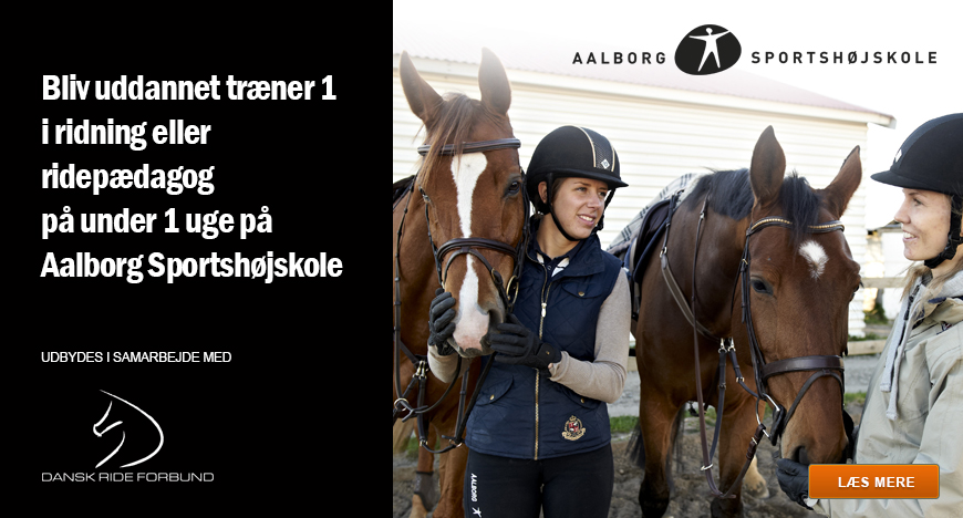 Drf Go Dansk Ride Forbund Alt Til Ridesporten